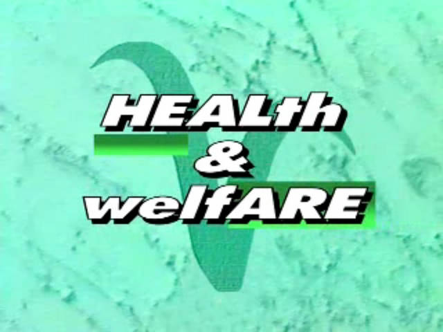 Health + Welfare