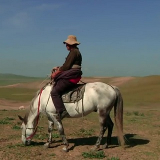 Drokpa, Nomads of Tibet