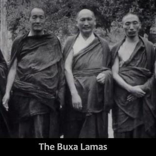 The Buxa Lamas
